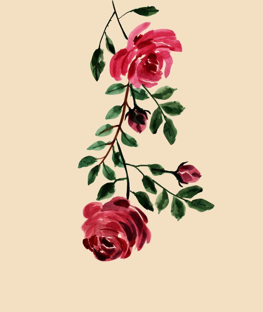 Imprimeu floral Sinestezic pentru fusta de zi midi Rose