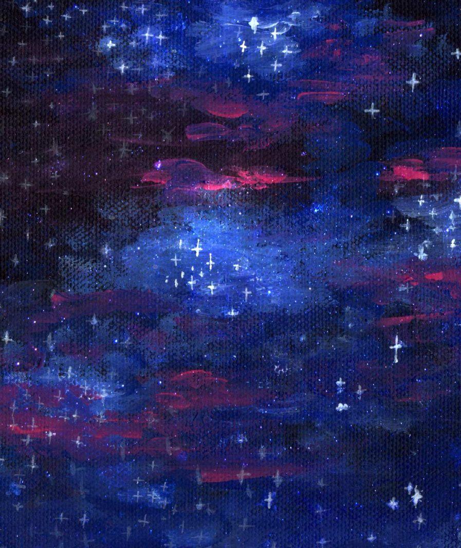 Imprimeu floral Sinestezic pentru fusta de seara asimetrica Night Stars