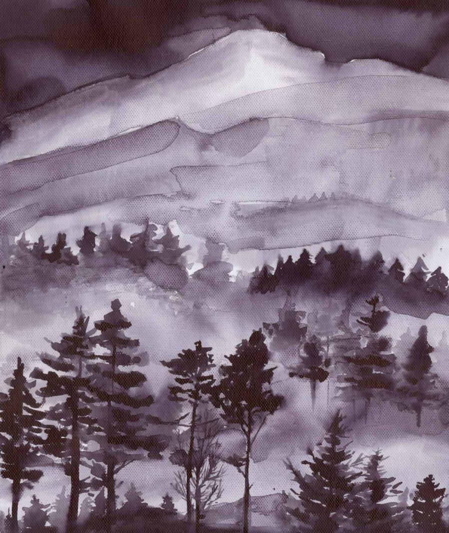 Imprimeu peisaj Sinestezic pentru rochie de seara lunga Black Forest